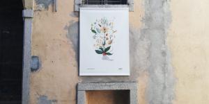 herbarium_4.jpg