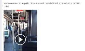 video facebook bus